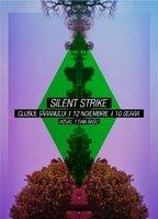 Turneu Silent Strike: Sibiu, Brasov, Bacau, Iasi si Bucuresti