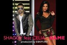 Shaggy feat. Celia - Dame (piesa noua)