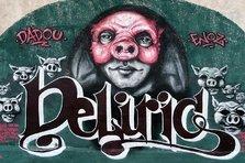 Teaser interviu: DELIRIC1