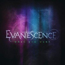 Evanescence - What You Want (videoclip)