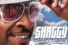 Shaggy - She Gives Me Love (piesa noua)