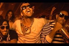 Swizz Beatz, Chris Brown, Ludacris - Everyday Birthday (single nou, preview clip)