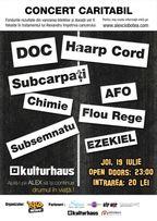 Concert Caritabil: DOC, Subcarpati, Haarp Cord & friends