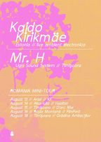 Kaido Kirikmae - concerte ambient electronica