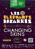Concert Les Elephants Bizarres si Changing Skins in Club Why?Not!