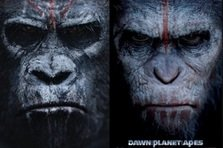 Nu rata trailerul Dawn of the Planet of the Apes