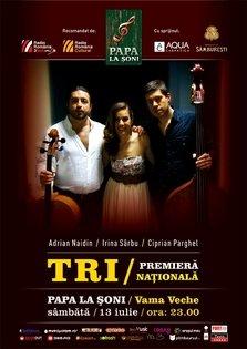 Adrian Naidin, Irina Sarbu si Ciprian Parghel @ Papa la Soni