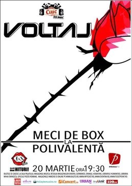 "Trupa Voltaj va provoaca la ""Meci de box"""