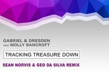 Geo Da Silva & Sean Norvis - Tracking Treasure Down (remix)