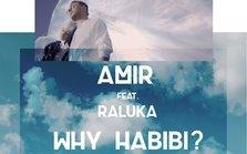 Amir ft. Raluka - Why Habibi? (piesa noua)