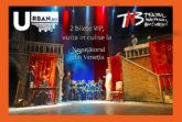Castigator experienta VIP Negutatorul din Venetia Teatrul National din Bucuresti